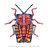 Tessaratoma papillosa