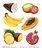 Fruits & Légumes exotiques