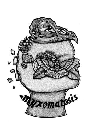 Myxomatosis.