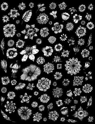 Flowers - Pattern