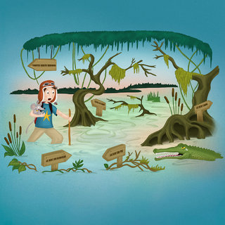 Les marais insensés