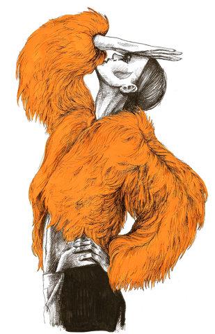 Orange fur illustration
