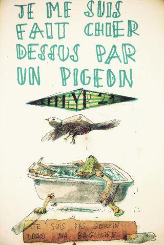 Par un pigeon