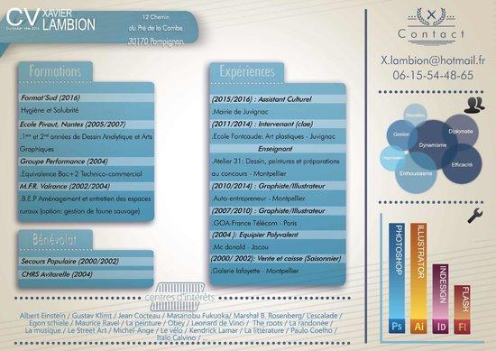 Book De Xavier Lambion Aka Iko Portfolio Cv Logos