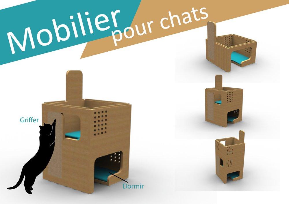 parcours chat appartement ce qu 39 il faut savoir sur un. Black Bedroom Furniture Sets. Home Design Ideas