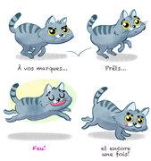 Le chat qui court