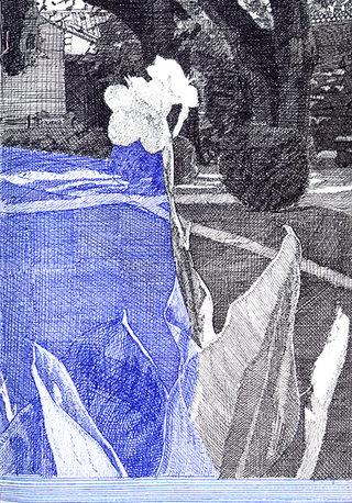 fleur 1, 2010, stylo sur papier, 20,9x14,7 cm