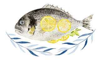 Daurade / Seabream
