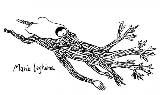 Marie leghima Portfolio :