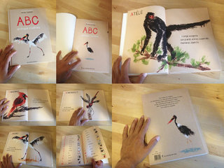 ABC animaux insolites - Balivernes ‰ditions 2013