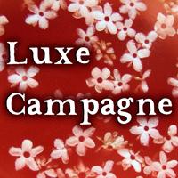 Ultra-book de luxe-campagne : Ultra-book