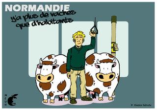 Y'a plus de vaches que d'habitants