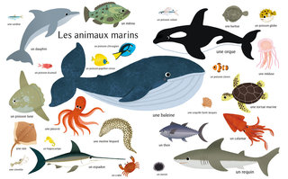 Les animaux marins (poster)