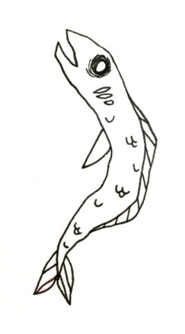 flash poisson.JPG