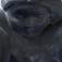 Michael Bataille sculpteur : Ultra-book