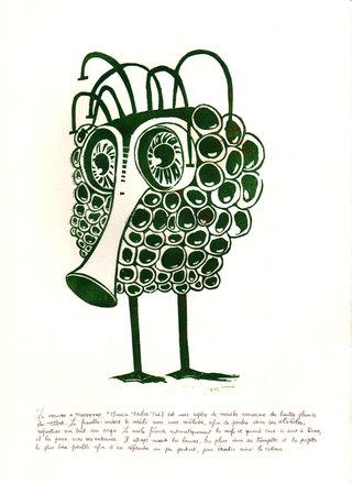 Encyclopédie animale - Mouche à trompette