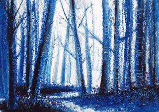 11-forêt.jpg