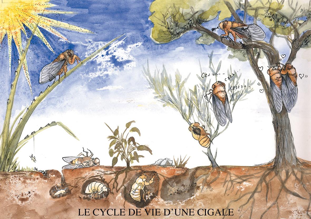 Ultra book de nathaliedento portfolio humour for Astrologie ou le miroir de la vie