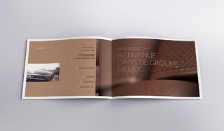 RAPPORT ANNUEL Groupe Nedey