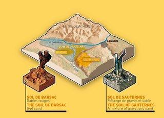 Terroirs de Sauternes et Barsac
