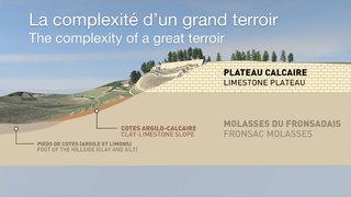 Profil du terroir du Château de Pressac