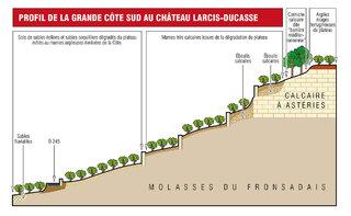 Coupe de sol du Château Larcis-Ducasse (Saint-Emilion)
