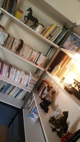 Vue bibliothèque réalisée 3