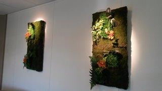 Les tableaux végétalisés