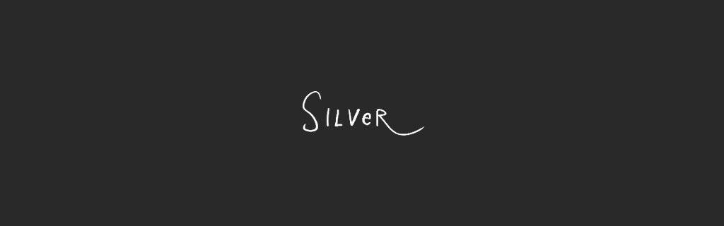Silver Portfolio