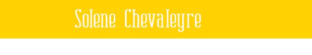 Solène Chevaleyre : Ultra-book