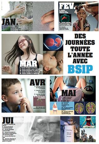 bsip.jpg