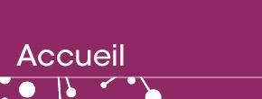 S. Carémoli-Portfolio-stef-de-nidillus Portfolio :Logotypes / Identités visuelles