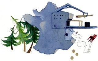 Terre sauvage (Bayard Presse)