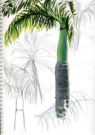 Ile de la Réunion.