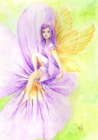 Violette sauvage