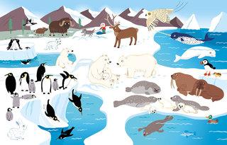 Les animaux du monde Editions Millepages