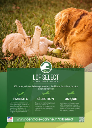 Flyer promotionnel pour le site internet LOF Select