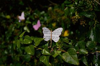 Papillons de papier