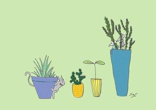 Derrière les plantes