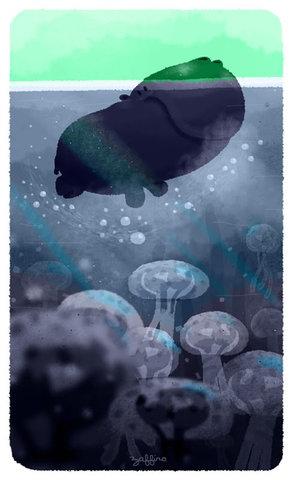 Hippo dans la mer