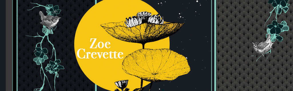 Ultra-book de zoecrevette Portfolio :